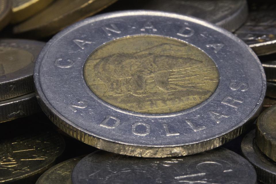 dolarová mince