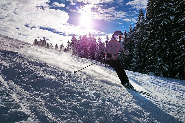 lyžování u lesa